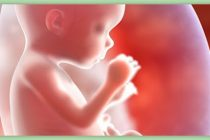 Feminista aborta a bebé porque era chico
