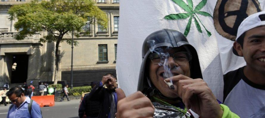 México aprueba la siembra y consumo de marihuana. Los drogadictos están muy contentos.