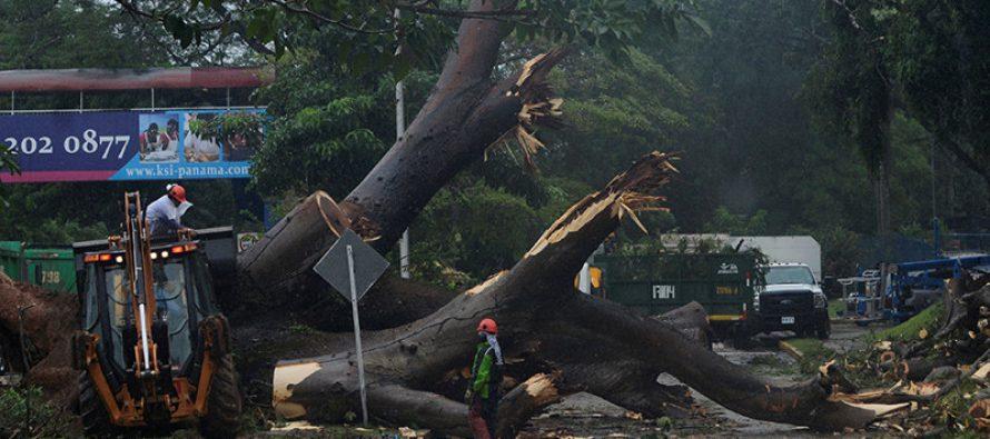 Declaran alerta roja: Otto causa siete muertos a su paso por Panamá y se convierte en huracán