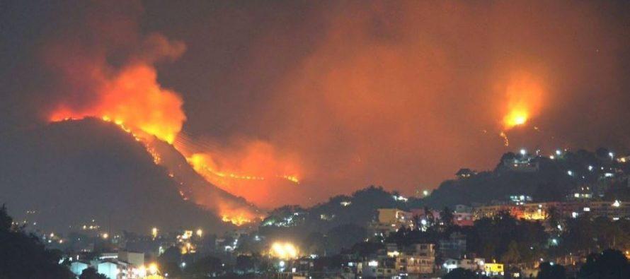 Incendios destruyen más de 250 hectáreas en Parque Nacional El Veladero de Acapulco